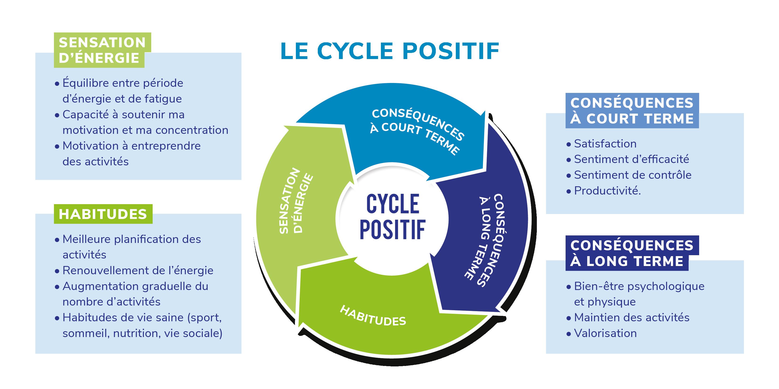 Cycle positif